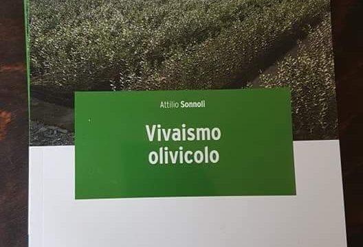 Vivaismo olivicolo